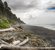 Ruby Beach by yellocoyote
