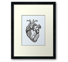 An anatomical heart Framed Print