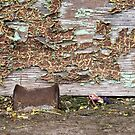Rustic Shed Door (Detail #2) by Edward A. Lentz