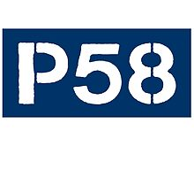 P58 - LOGO IN BLUE RECTANGLE by platform58