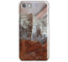 Curled up iPhone Case/Skin