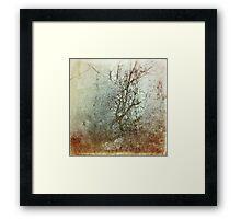 Winter in My Heart Framed Print
