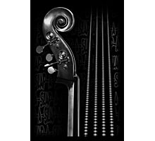 Slap Bass Monotone Photographic Print