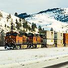 I hear that train a-comin' by Bryan D. Spellman