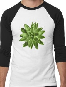 Greenery succulent Echeveria agavoides flower Men's Baseball ¾ T-Shirt