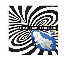 Rabbit Hole by blackychaan