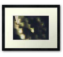6680 Framed Print
