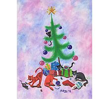 A Kitty Christmas Photographic Print