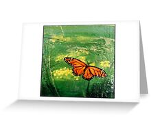 Monarch buterfly in the backyard Greeting Card