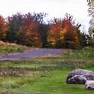 Leaving Lac Brome, Quebec, Canada, October 2014  by heatherfriedman