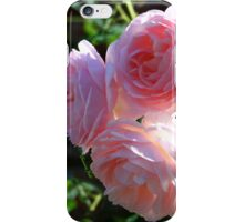 Backlit Roses ~ Sweetly Romantic iPhone Case/Skin