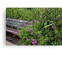 Beauty Around The Bench Canvas Print