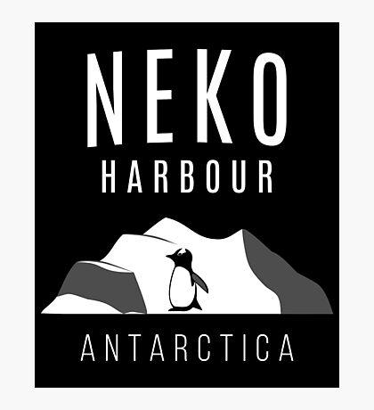 Neko Harbour, Antarctica - Penguin Paradise Photographic Print