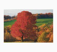 Fall Foliage One Piece - Long Sleeve