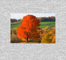 Fall Foliage Hoodie