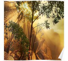 Cliff face in mist, Mount Buffalo Poster