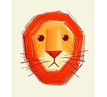 Sad lion Photographic Print