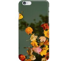 Leaves on Trout Pond in Fall iPhone Case/Skin