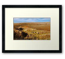 Finding Green Grass - Rural Australia Framed Print