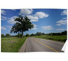 Tree by the road  Poster