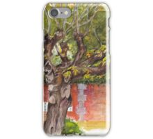 Asolo PIazza Tree iPhone Case/Skin