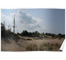 Sand dunes with a tree Poster