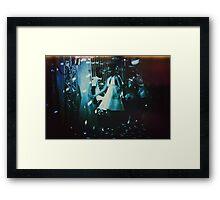3955 Framed Print