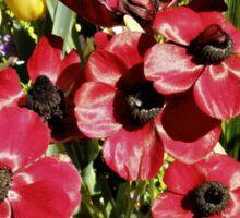 Floriade Flowers Sticker