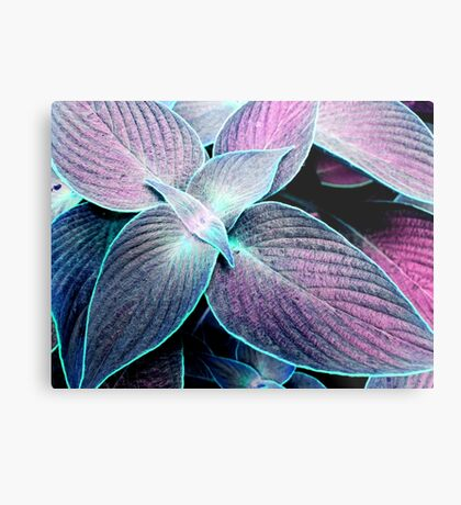 Tropical leaves V Metal Print