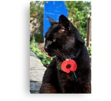 Oscar Wearing His Poppy With Pride Canvas Print
