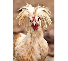Bad Hair Day Rooster Art Print, Pillow, T-shirt, Hoodie, Tote Bag, iPhone Case, Samsung Galaxy Case, iPad Case Photographic Print