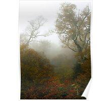 Foggy Scene Poster