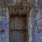 Overgrown Doorway by SketchStudy