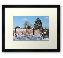 Old Glory Mailbox in the snow Framed Print