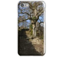 Wooded steps iPhone Case/Skin