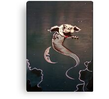 Falkor - The Never Ending Story Canvas Print