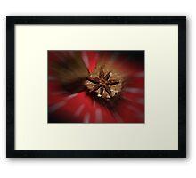 Spicy Brownies Framed Print