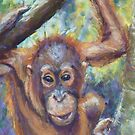 Amin 2 - Project Orangutan, the Exhibition by Terri Maddock