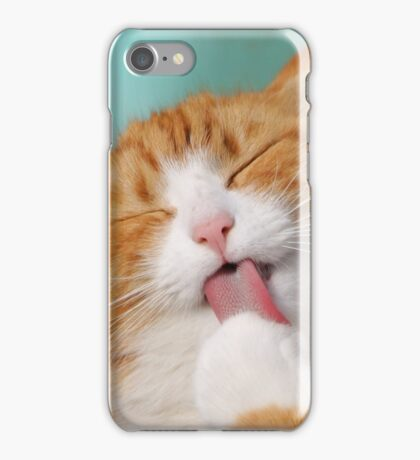 Funny hilarious silly cat iPhone Case/Skin