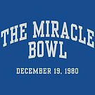 The Miracle Bowl by aBrandwNoName