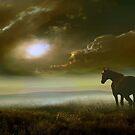 Equine Life by Igor Zenin