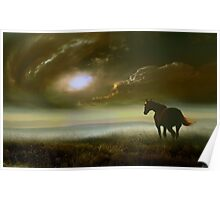 Equine Life Poster