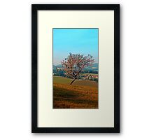 Tree on indian summer afternoon | landscape photography Framed Print