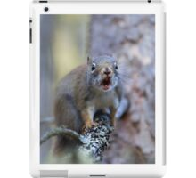 Chatter Box - Red Squirrel - Algonquin Park, Canada iPad Case/Skin