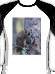 Chatter Box - Red Squirrel - Algonquin Park, Canada T-Shirt