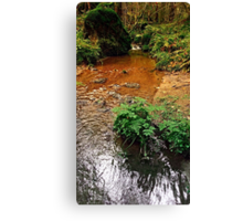 Little stream in autumn colors | landscape photography Canvas Print