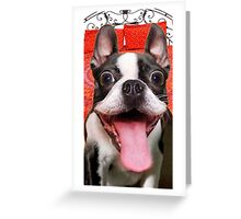 FUNNY GOOFY BOSTON TERRIER DOG~Just Try not TO Laugh! Greeting Card