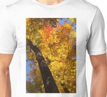 Autumn Foliage Delight In Vivid Yellow, Red And Orange Unisex T-Shirt