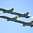 Blue Angels by SuddenJim