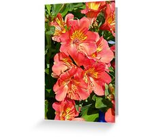Victorian Lilies Greeting Card
